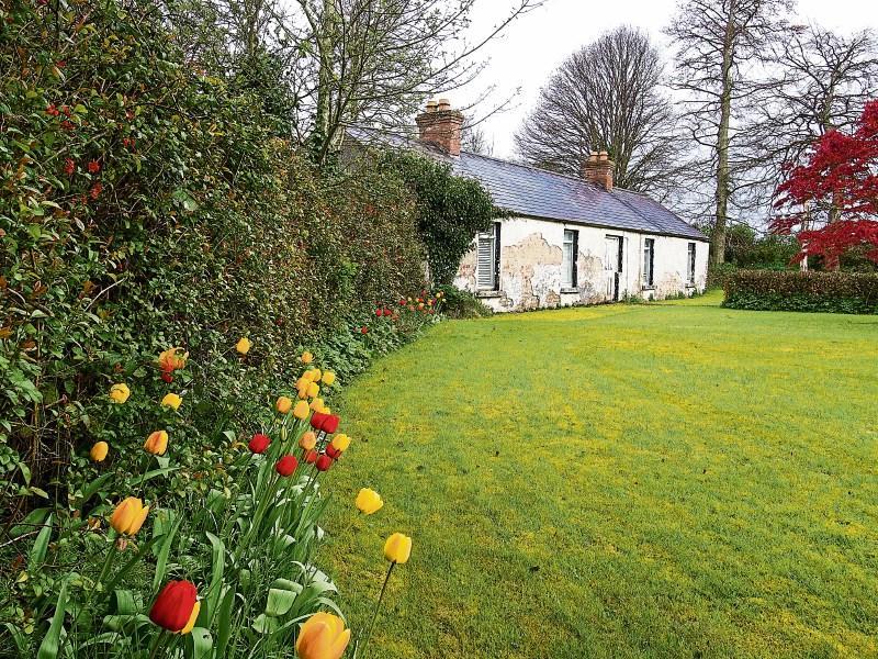 Savills | Crotanstown House & Stud, Crotanstown, Curragh