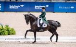 Kildare's Judy Reynolds has climbed 19 places to 35th on the latest FEI World Dressage Rankings