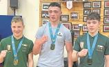 Kildare boxing: Future bright for Fr Flanagan's BC