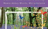 A Barrow Bluebells funday to be held in Moore Abbey Woods