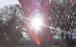 Sunshine all day in County Kildare