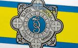 Cattle trailer robbed in Naas