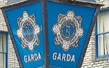 Thefts account for most crime in Newbridge