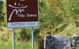 Praise for Tidy Towns volunteers in Kill