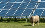 Solar farm on outskirts of Kildare town refused because of impact on local scenery