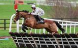 Kildare racing: What will Willie Mullins do with his wonder horses?