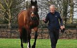 January dates announced for Kildare stud farms Open Days