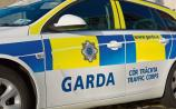 Garda appeal for information on traffic collision near Springfield Hotel
