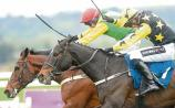 Profile Systems to celebrate 40 years in business at the Punchestown Festival
