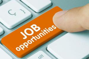 Kildare Jobs Alert: Full and part time opportunities at Creche and Montessori