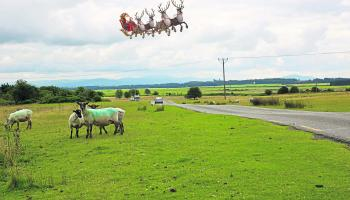 EXCLUSIVE PHOTOS: Santa's sleigh spotted in Kildare skies
