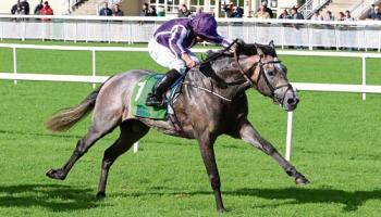 Moore in Naas to ride Classic winner Capri