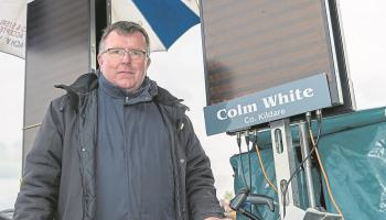 Punchestown feature: Colm White recalls a lifetime in the racing game
