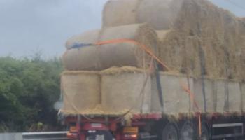 Hay bales falling from lorry near Naas cause Kildare motorway tailbacks; All-Ireland semi-final delayed