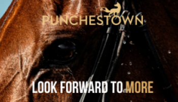 Punchestown Racecourse welcomes back racegoers with free event