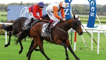 Looking ahead to Sunday's Auction Series Final at Naas