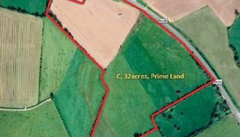 Property Watch: Thirty-two acres of land at edge of Geashill village up for auction