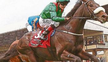 Can Cracksman conquer this Saturday's Irish Derby
