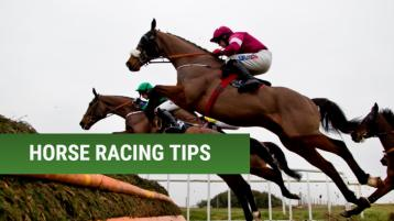 RACING: Five horses worth a bet at Cheltenham next week