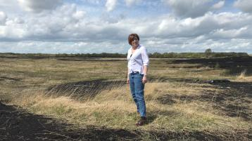 Author releases latest book - a poignant tale of family bonding based in the boglands of Kildare