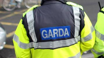 Gardaí detain man who abused Naas Hospital staff
