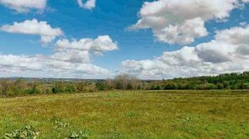 Property Paradise: Site for a post-Covid retreat in the Slieve Blooms