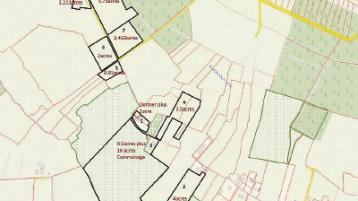 Property Watch: Small lots of midlands land 'at a sensible price' — auctioneer