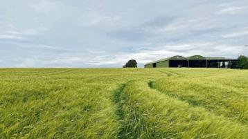 Property Watch: 54 acres of land near Athy, Co Kildare, for sale