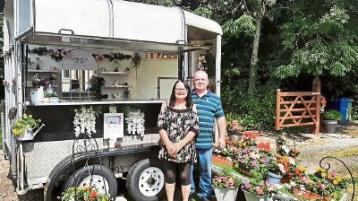 Kildare's Crazy Plant Lady takes to the road in converted horse box