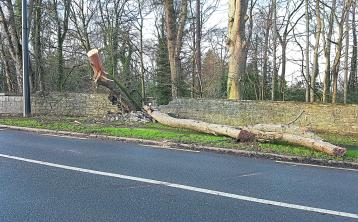 Kildare roads closed due to storm damage