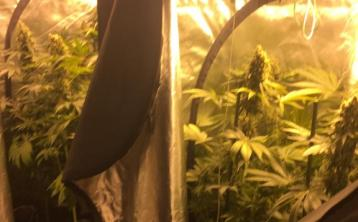 Kildare man charged over alleged €61,000 Newbridge cannabis growhouse find