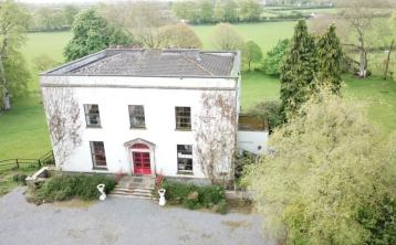 Contents of famous historical Kildare house go for auction