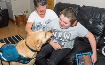 Kildare's hero guide dogs are making a real difference