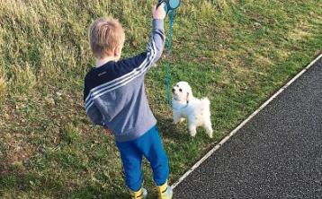 KILDARE PARENTING COLUMN: We're now a family of five as new pup 'Seamus' arrives