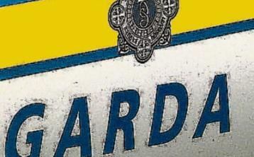 Gardai renew appeal for information on Kildare town bus stop assault