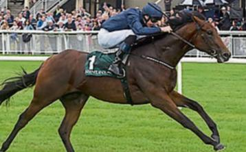 THE PUNTER'S EYE: Three horses to back this weekend