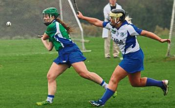Snow cancellations: Johnstownbridge camogie final in Croker among fixtures off due to weather