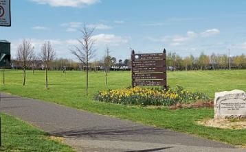 OPINION:No end in sight to anti-social behaviour at Monread Park in Naas