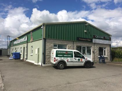 New online vet service start up in Kildare town - Leinster