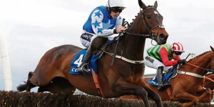 Record crowd attendance on Saturday at Punchestown 2019