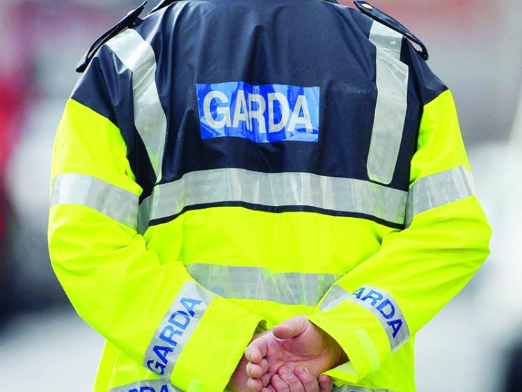 Man and child presumed dead in plane crash near Edenderry