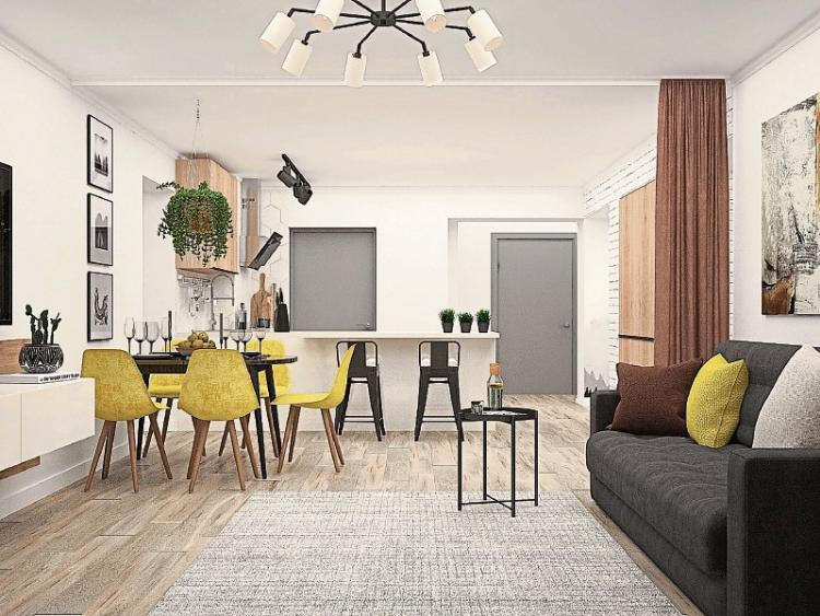 Kildare Opinion Controversial Co Living Concept Could Help Ease
