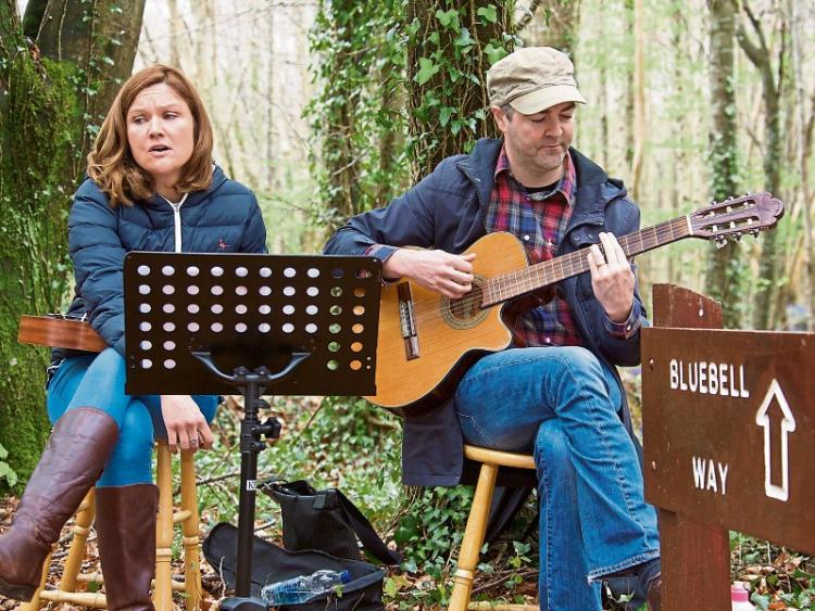 Image result for bluebells and buskers