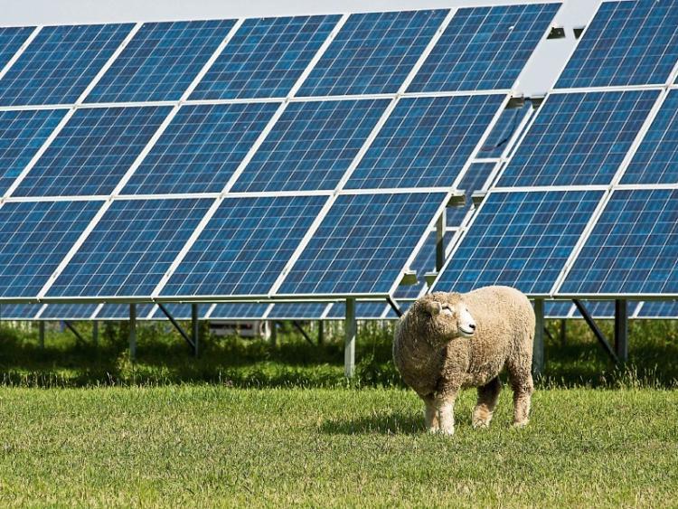 North Kildare Solar Farm Refused As Pollardstown Decision