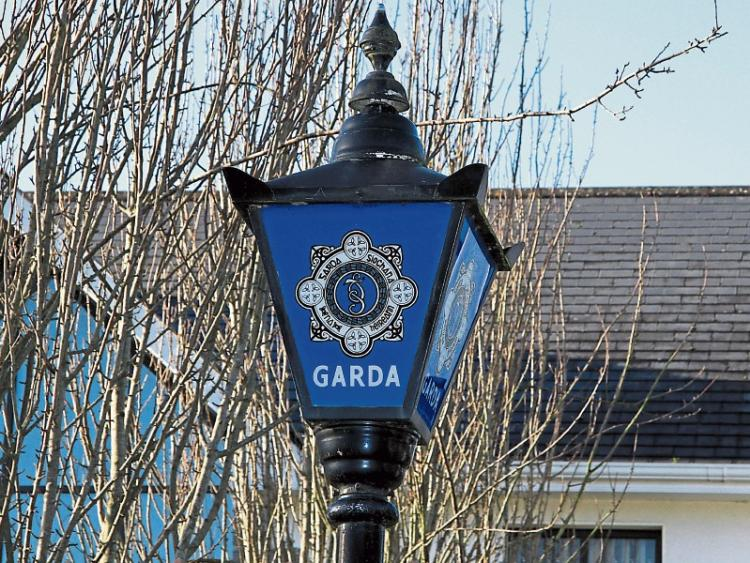 Thefts From Garden Sheds On The Rise In Kildare